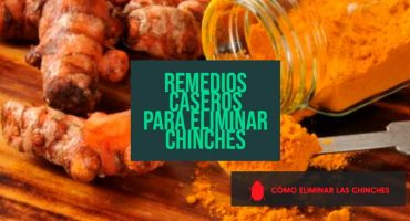 Remedios caseros eliminar chinches