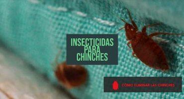 insecticidas para chinches