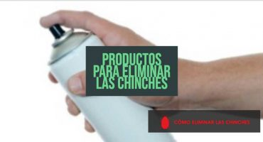productos eliminar chinches